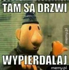 wszystkie memy z neta :v # Humor # amreading # books # wattpad Meme Pictures, Reaction Pictures, Weird Pictures, Funny Images, Funny Photos, Kermit, Haha Funny, Hilarious, Polish Memes