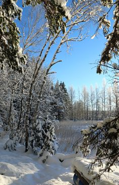 Another beautiful winter day in Värmland, Sweden.