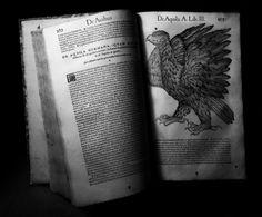"""#GESSNER (Conrad) Historiae animalium. Liber III - anno MDLIIII (1554) Collezione privata """"Frilli"""" Forte dei Marmi.  #frillilibrary"""