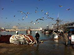 Casablanca harbor, Morocco - Maroc Désert Expérience tours http://www.marocdesertexperience.com