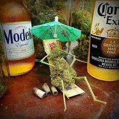 Marijuana Humor | Medical Marijuana Quality Matters | Repined By 5280mosli.com | Organic Cannabis College | Top Shelf Marijuana | High Quality Shatter | #OrganicCannabis