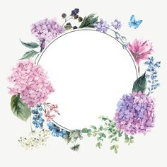 Beautiful fragrant flower picture frame PNG and Vector Frame Floral, Flower Frame, Flower Art, Art Flowers, Flower Backgrounds, Wallpaper Backgrounds, Iphone Wallpaper, Wallpapers, Illustrator Design
