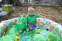 fill inflatable pool with easter grass and eggs for babies to hunt