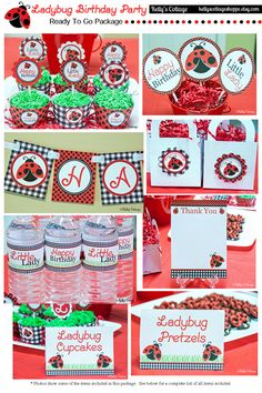 Ladybug Birthday Party Ready To Go Package by KellysCottageShoppe