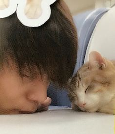 Japanese Boy, Japanese Models, Japanese Beauty, Funny Animals, Cute Animals, Cute Emo Boys, Japanese Flowers, Kubota, Flower Boys