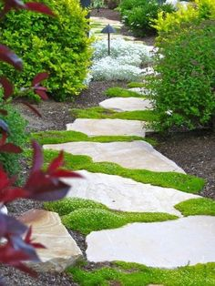 Stepping Stone Walkways, Flagstone Pathway, Stone Garden Paths, Garden Steps, Rock Pathway, Backyard Walkway, Backyard Landscaping, Natural Landscaping, Moss Garden