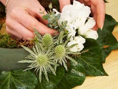 Erste Blüten und Pflanzen stecken