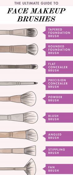 Follow this guide for the proper face makeup brushes to use!