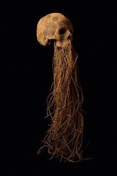 Cordes naturelles - www.jim-skullgallery.com
