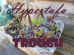 Hypertufa Trough - alpine plants and hardy succulents