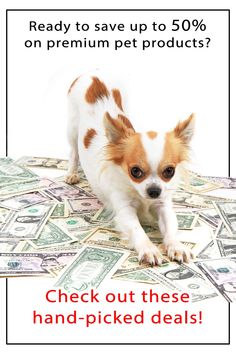 Dog ownership is expensive, especially when you want to give your dog the best of the best in pet products. That's why I hand-picked some of the best deals to help you save! #ad #dogs #coupon #savings #dogfood #dognutrition Cute Little Animals, Little Dogs, Big Dogs, Sign Language Alphabet, Dog Nutrition, Flea And Tick, Dry Dog Food, Chihuahuas, Dog Collars
