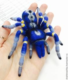 Купить Брошь Паук Poecilotheria metallica - тёмно-синий, брошь, паук, ручная работа