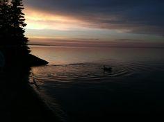 A night swim at Houghton Lake