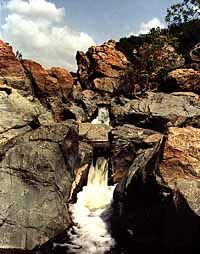 Los Peñasquitos Canyon Preserve (a trail map:  http://www.sandiegohikers.com/Hiking-Trails/Los-Penasquitos-Canyon.html)