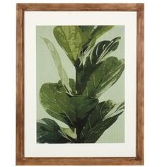 Flourish with the 'Lush Botanical' Framed Graphic Art Print. Rich leaves are displayed with a white border and wooden frame surrounding the picture. Great for the naturalist in your family this piece will bring comfort and relaxation to any room you place it in.