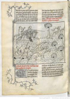 « Le Livre de chasse, que fist le comte FEBUS DE FOYS, seigneur de Bearn ».