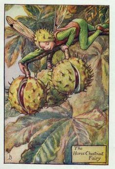 Flower Fairies Of The Autumn - The Horse Chestnut Fairy