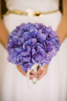 Las hortensias, en combinación con otras flores, para los ramos de novia.