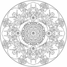 Butterfly Mandala to color from Nature Mandalas Coloring Book.