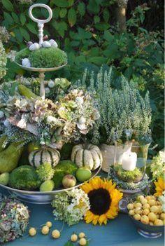 Garden Blog