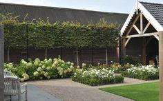 Bekijk de foto van Lien8 met als titel Bestrating tuin & terras en andere inspirerende plaatjes op Welke.nl.