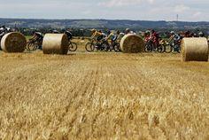 Le peloton traverse les bottes de foin du Rhône-Alpes le 13 juillet 2012. REUTERS/Bogdan Cristel