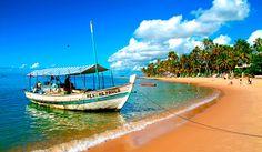 Praia do Forte- Bahia-Brasil