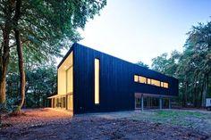 strips windows wooden claddding house exterior design