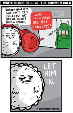 A little Immunology humor in the setting where I should be reading for this class | See more about biology humor, blood cells and humor.