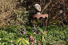 Über Zäune Schauen - Kunst und Garten