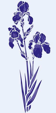 iris2-g1.jpg