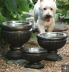 Put dog bowls in planters for a nicer look on the patio.
