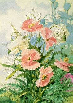 Fisher, Ellen Bowditch Thayer (American, 1800s) Poppies, 1889, watercolor on paper, private collection and rose flowers free & easy cross stitch pattern