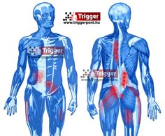 Trigger points Trigger Points, Movies, Movie Posters, Films, Film Poster, Cinema, Movie, Film, Movie Quotes