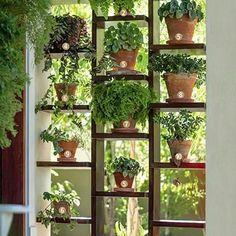 Jardim vertical fácil de fazer...