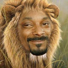 eac43dcae3e http   www.andpop.com wp-content uploads . Snoop DoggWorld Lion ...