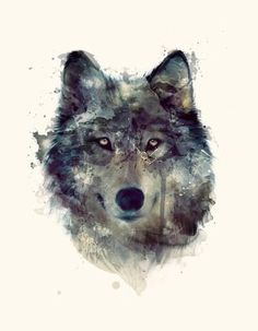 Beautiful painting wolf