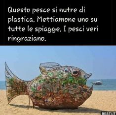 Questo pesce si nutre Save Our Earth, Save The Planet, We Can Do It, Let It Be, Scary Drawings, Italian Memes, Bellisima, Good To Know, Dumb And Dumber