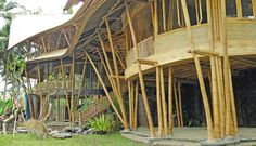Architecture, Ibuku. Sweet Bamboo Design! Bamboo Design, Pergola, Arch, Outdoor Structures, Garden, Plants, Bee, Architecture, Longbow