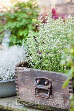 10 x sensommarinspiration   blomsterverkstad