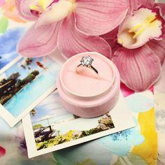 WIN an unforgettable getaway to Rarotonga & Aitutaki with Pacific Resort Hotel Group and The Diamond Shop www.thediamondshop.co.nz Diamond Shop, Hotels And Resorts, Group, Jewelry, Jewlery, Jewerly, Schmuck, Jewels, Jewelery