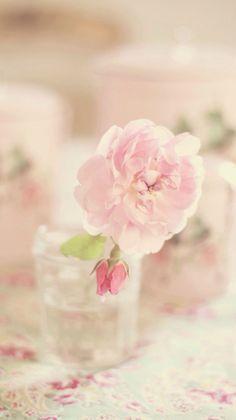 Nice flower wallpaper iPhone