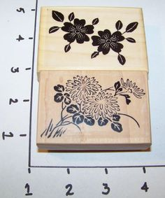 Lot of 2 New Mounted Rubber Stamps - Spring Flowers - Flower Twins & Astors