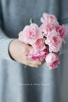 Shade Garden Flowers And Decor Ideas Carnation and Tulip Gentian Simple Flowers, Cut Flowers, Dried Flowers, Spring Bouquet, Spring Flowers, Pink Carnations, Tulips, Carnation Wedding, Shade Plants