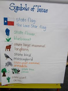 Texas Social Studies Lessons Howdy there! For a few weeks we talked about various Texas facts such as the symbolism behind the Texa. Kindergarten Anchor Charts, Kindergarten Social Studies, 4th Grade Social Studies, Teaching Social Studies, Kindergarten Literacy, School Week, Summer School, School Fun, School Stuff