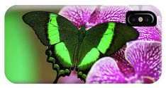 Emerald Swallowtail On Purple Orchid. Beauty In Frame 2 IPhone X Case for Sale by Jenny Rainbow Iphone 5c Cases, 5s Cases, Purple Orchids, Fine Art Photography, Are You The One, Emerald, Shell, Presentation, Profile