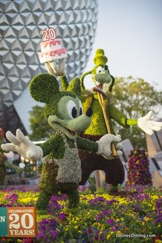 Mickey and Goofy are celebrating the 20th year of Epcot's Flower and Garden Festival! #epcot