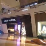 Louis Vuitton's largest US store is a 2 level jewel box