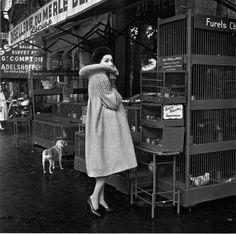 Pierre Cardin 1958