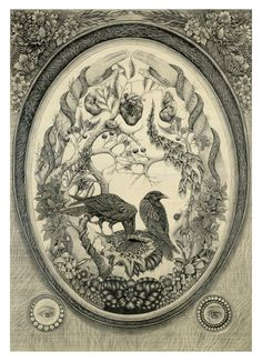 Scientific Illustration | darksilenceinsuburbia: Ellie Coates. Daphne,...